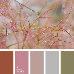 Pink, beige, khaki, gray, terracotta - a harmonious combination. These tones can be used both in the interior and in the creation of the wardrobe.