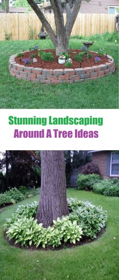 Outdoors Discover Stunning Landscaping Around A Tree Ideas - Landscaping Expert Tips Are you looking for landscaping ideas around a tree for backyard or front yard? l have here stunning landscaping around a tree ideas for your inspiration. Landscaping Around House, Landscaping Trees, Outdoor Landscaping, Front Yard Landscaping, Outdoor Gardens, Hydrangea Landscaping, Inexpensive Landscaping, Farmhouse Landscaping, Luxury Landscaping