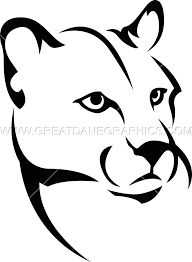 Image result for mountain lion drawings