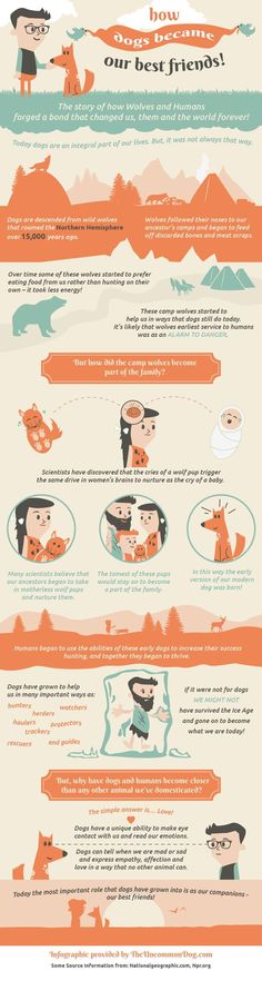 INFOGRAPHIC: How DOGS Became Our Best Friends!