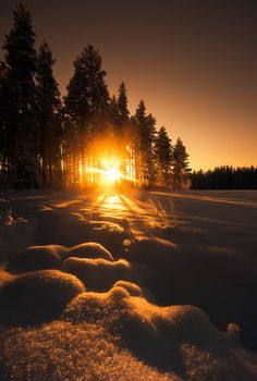 Golden morning sun and snow