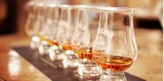 Startup Promises To Bring First Whisky Distillery To Israel (December 2013)