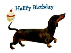 liams first birthday Dog Birthday Wishes, Happy Birthday Dachshund, Happy Birthday Messages, Happy Birthday Greetings, Birthday Quotes, Birthday Funnies, Dachshund Love, Daschund, Happy Birthday Pictures