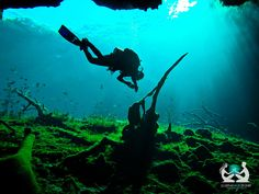 Cave diving in Tulum, #Mexico - I would love to do this.