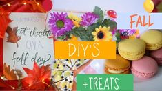Fall diys and treats! Autumn Day, Fall, Diy Videos, Instagram Accounts, Hot Chocolate, Diys, Birthday Cake, Treats, Recipes
