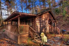 Win a 3-day Fall Smoky Mountain cabin getaway near Asheville, includes train excursion, rafting, zip lines and dining! Drawing is Sept 20, 2015.