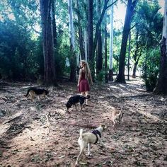 The world would be a nicer place if everyone had the ability to love as unconditionally as a dog. #melevatrip #nature #love  #travellers #viaggiatori #brazil #followus #natura #goodvibes #instalove #ameliechloedungawonder #instagram #wild #my4dogs #vwvan #vanjavenuti #dogs #fuoristrada #instagood #dreadlocks #photooftheday #vanlife #forest #adventure #kombihome #kombi #kombilovers