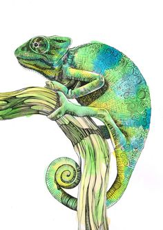 Chameleon Original Art by SophCunninghamArt on Etsy