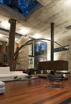 Tree through a hole of a circle. Concrete, wood and a corten steel based cuboid of a fireplace.