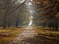 Walk Worthy by LoganWeileriii, via Flickr