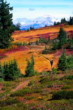 Washington - Glacier Peak Wilderness - Pacific Crest Trail Association - Photo Gallery