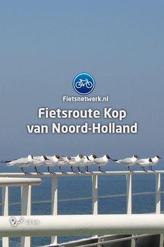 Wind Turbine, Holland, Om, The Netherlands, Countries, Netherlands, Tours, The Nederlands