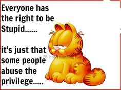 Everyone has the right to be stupid funny quotes quote garfield lol funny quote funny quotes humor stupid stupidity