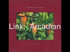 Link - Arcadian Electronic Music, Album Covers, Techno, Scriptures, Link, Dance, Youtube, Dancing, Techno Music