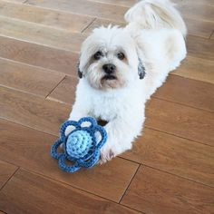 There are many types of pet toys offered for you to pick from. So, when searching for an ideal toy for your pooch keep in mind to consider your dog's age and activities initially. Ideal Toys, Unique Toys, Crochet Cat Toys, Free Crochet, Puppy Chew Toys, Dog Ages, Dog List, Mini, Dog Cat