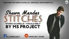 Shawn Mendes - Stitches (Studio Acapella - Vocals Only)