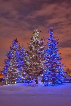 CANADA: Christmas in Calgary, Alberta, Canada