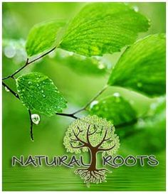 www.naturalroots.ch