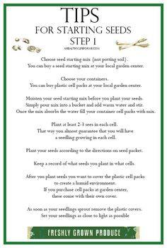 Seed Starting Tips for Starting Seeds Step 1 {Planting} - A Healthy Life For Me - Tips for Starting Seeds Planting Vegetables, Organic Vegetables, Growing Vegetables, Growing Tomatoes In Containers, Grow Tomatoes, Buy Seeds, Organic Gardening Tips, Urban Gardening, Zone 9 Gardening