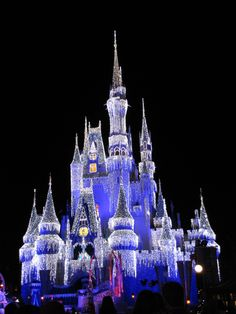 Disney World, Florida - LOVE THIS PLACE FOREVER! :)