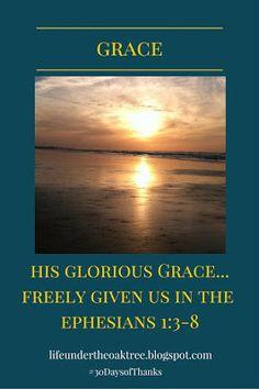 #Grace #30DaysofThanks #Thanksgiving #Thankful #SeasonofThanks