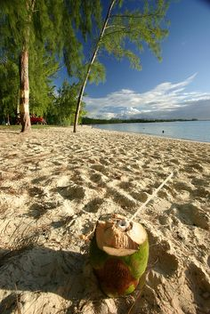 Mauritius beach (and coconut)
