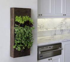 wooden box kitchen herbs, Cool DIY Indoor Herb Garden Ideas, http://hative.com/cool-diy-indoor-herb-garden-ideas/,