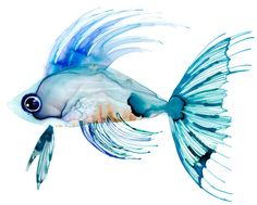 Margaret Berg Art: Watercolor Fish: Teal