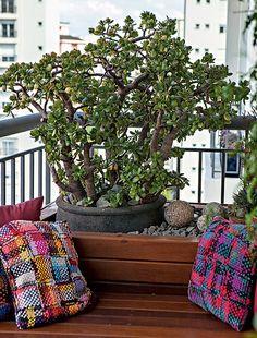 Apaixonada por suculentas, a paisagista Paula Galbi fez questão de ter alguns exemplares na varanda do seu apartamento. A planta-jade, que é super-resistente e produz delicadas flores brancas, ficou em uma das pontas, próxima ao banco de marcenaria