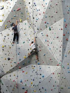 Colourful Climbing Wall – Famous Last Words