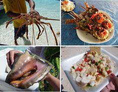 ir para Los Roques, Venezuela para curtir as praias e a comida fusion regional