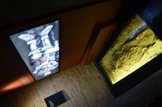 """O Catavento Cultural e Educacional lança a exposição permanente """"Do Macaco ao Homem"""", uma parceria do museu com o Laboratório de Estudos Evolutivos Humanos da Universidade de São Paulo (USP). A entrada é Catraca Livre."""