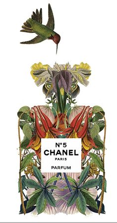Chanel Nº 5 perfume illustration by Sixto-Juan Zavala for Highlife Magazine | Cynthia Reccord