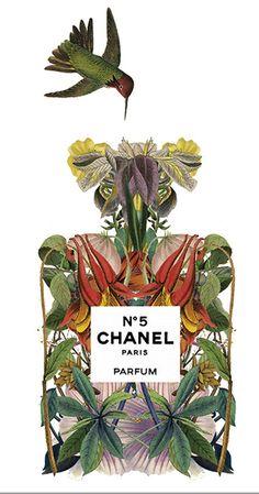 Chanel Nº 5 perfume illustration by Sixto-Juan Zavala for Highlife Magazine | Cynthia Reccord