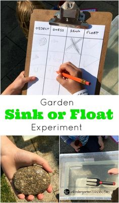 Engage children's natural sense of curiosity and introduce them to the basics of a science experiment in this Garden Sink or Float Activity. #scienceforkids #scienceexperiment #sinkorfloat #handsonscience #preschool #kindergarten