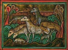 Schafrassen und Wollproduktion – ein geschichtlicher Überblick.