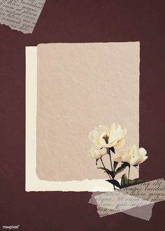 Collage Background, Flower Background Wallpaper, Flower Backgrounds, Textured Background, Wallpaper Backgrounds, Paper Background Design, Beauty Background, Pastel Background, Polaroid Picture Frame