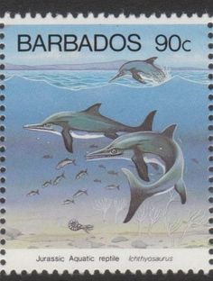 Barbados 1993, Ichtyosaurus