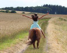 Instagram media by my_flyinghorse - Sorry das nichts kam aber ich hab den ganzen Tag geschlafen 😂 • Pc : @trickshetty •  #horse #equestrian #equestriangirl #liberty #dressage #freedressage #free #dressur #freiheit #like4like #follow4follow #l4l #f4f #horse #horseride #horselove #pfw_post #pfh_post #pspwtd_pferd #yoho_post #pt_abm #picoftheday