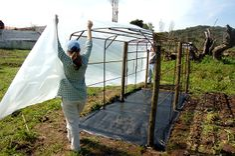 Construção de uma Pequena Estufa | Portal do Jardim.com