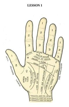 Palmistry Lesson 1                                                                                                                                                                                 More