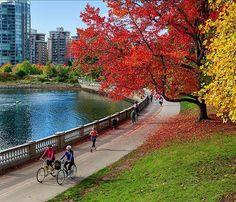 Fall In Vancouver  #vancouver #fall #autumn #dailyhivevan #canada #photos604 #explorebc #explorecanada #bc #ilovebc #photography #veryvancouver #vancitybuzz #604now #vancouverisawesome #huffpostbc #globalbc #vancityhype #cbcvancouver #autumnequinox #tbt #ig_color