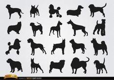 Several dog breeds figures