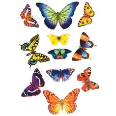 Butterfly window stickers