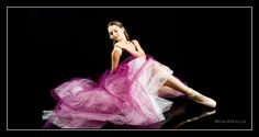 """Alexa photographed by Monica Hahn in my pink """"frock"""""""