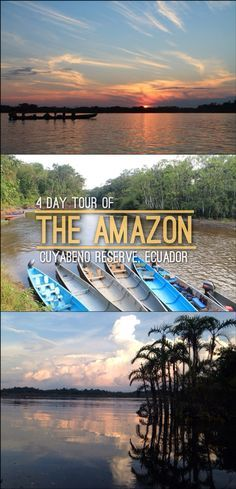 Still wondering where to do a Tour of the Amazon in South America? Ecuador is a great and cheap place to do it!   Read More: http://mismatchedpassports.com/2016/05/31/4-day-amazon-tour-at-the-cuyabeno-reserve-ecuador/