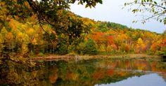 Easton Mountain in autumn. Harvest Gay Spirit Camp is November 1-3, 2013! http://eastonmountain.org/harvest-gay-spirit-camp/