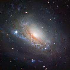 Supernova 2003cg in the galaxy NGC 3169 | ESO/Igor Chekalin