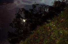 black river by Serhio Falkone on 500px
