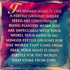 The Four Agreements, Toltec Wisdom.